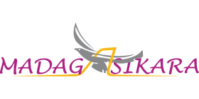 Donbass Aero Logo