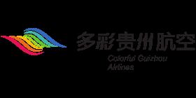 Gabon Airlines Logo